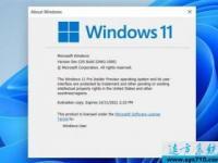 开发者送新招:绕过TPM 2.0限制安装Windows 11系统